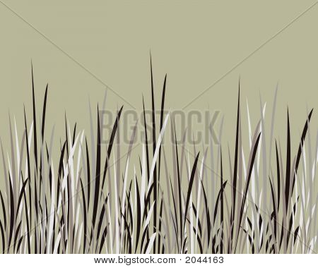 Whispy Black And Grey Grass Against Olive Background