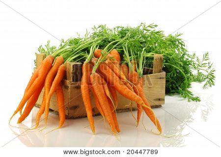 zanahorias recién cosechadas en un cajón de madera