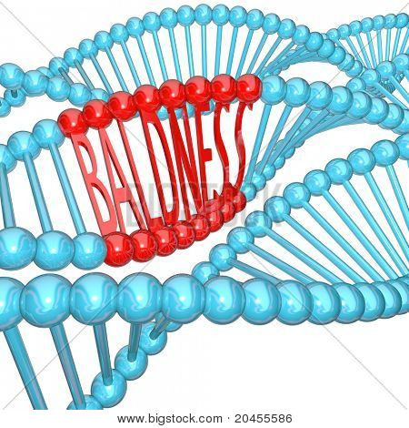 The word Baldness hidden in strands of DNA, representing the cause of balding in your genes -- it's hereditary!