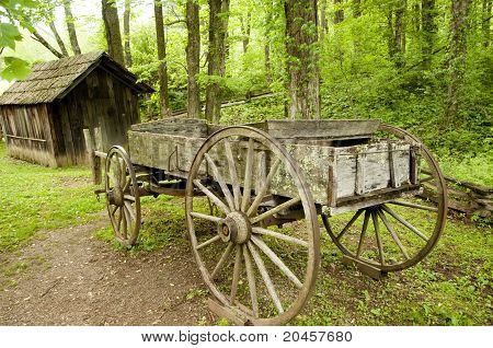 Cart And Shed