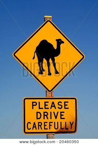 Sign warns motorists of approaching camels
