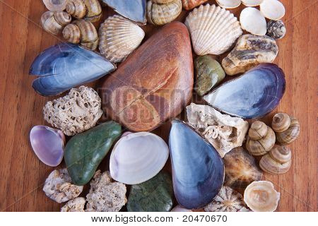 Beautiful Decoration Of Colorful Stones And Shells