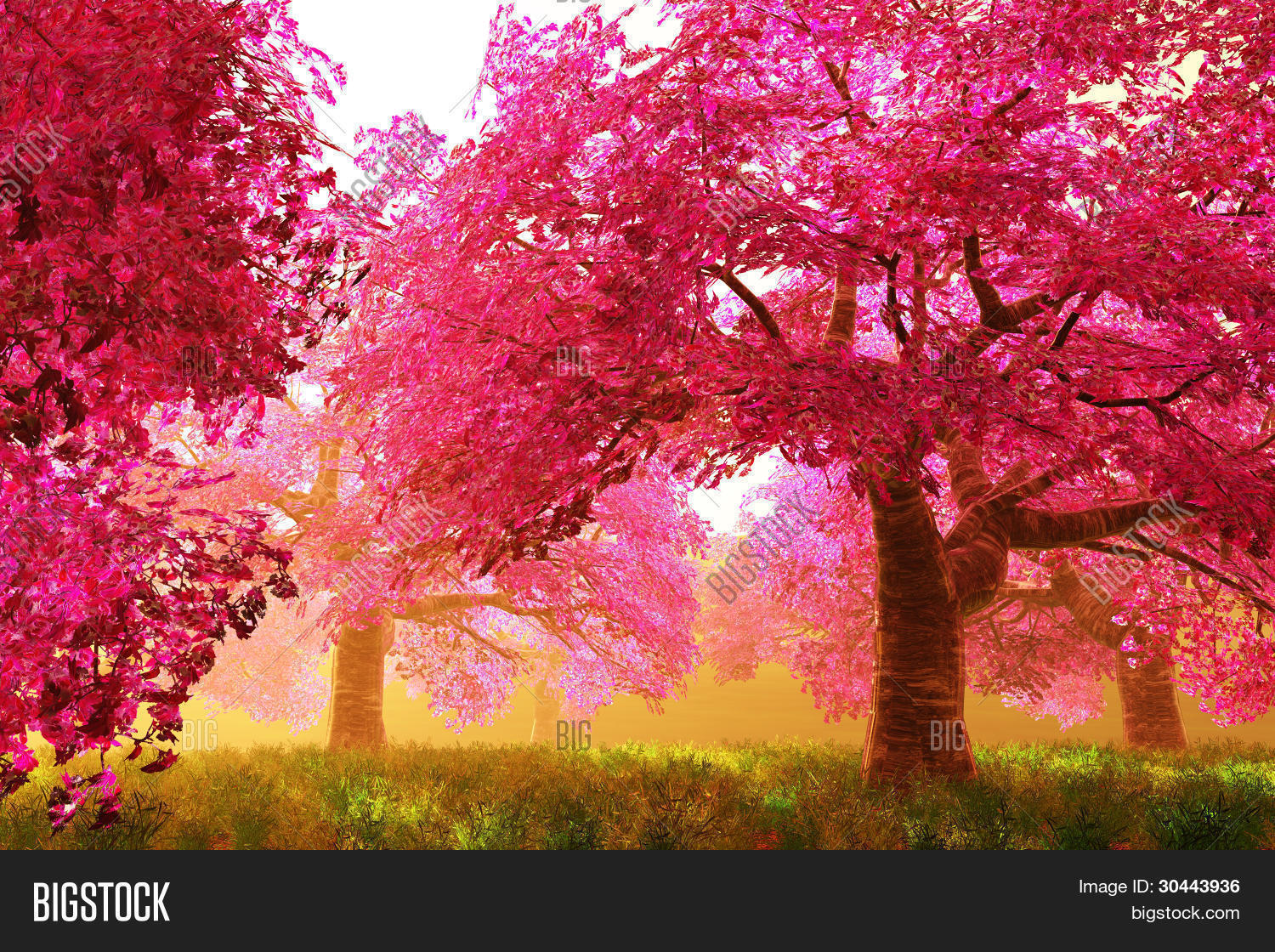 Mysterious japanese cherry blossom tree sakura 3d render Japanese cherry blossom tree