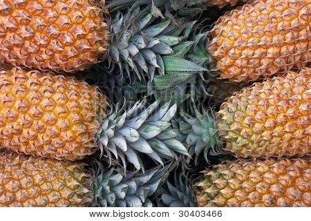 Close Up Of Pile Of Fresh Ripe Pineapples