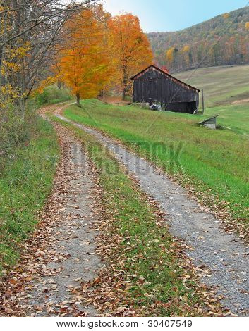 Country lane in autumn, leading past a rustic barn