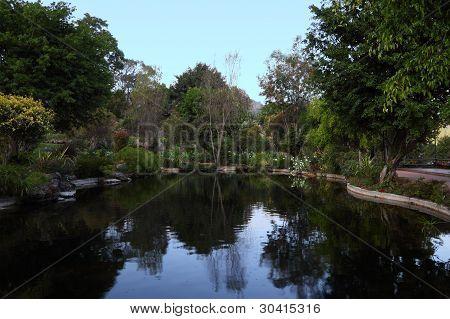 Pond in public garden.