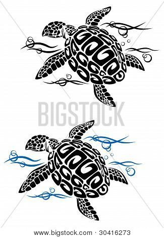 Turtle In Sea Water