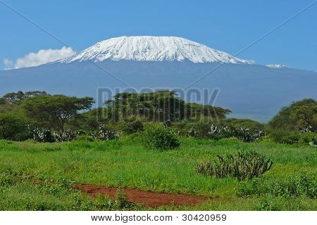 Kilimanjaro In Kenya