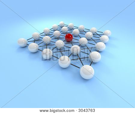 Large Network