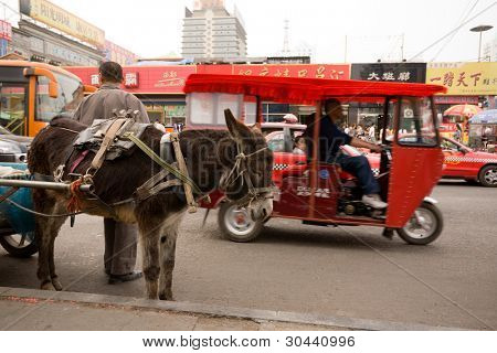 China. Street. In the foreground  a donkey.