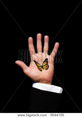 One Butterfly In Hand