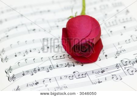 Single Red Rose On Musical Notes Page