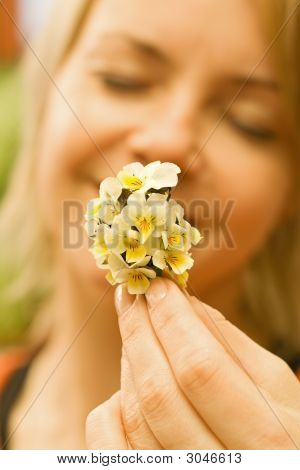 Wildflowers Bouquet In Woman Hand