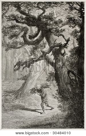 Man walking  in the forest among old cedars, carrying wood on his shoulder. Created by Neuville after Japanese sketch by unknown author, published on Le Tour Du Monde, Ed. Hachette, Paris, 1867