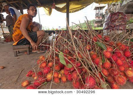 Rambutan Producer