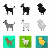 Isolated Object Of Breeding And Kitchen  Icon. Set Of Breeding And Organic  Vector Icon For Stock. poster