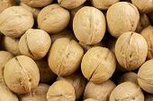 A Group Of Walnuts In The Shell A Lot, The Background Wallpaper Close-up. Nuts Brown Beige Structure poster