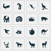 Animal Icons Set With Hogfish, Porcupine, Swordfish And Other Joey Elements. Isolated Vector Illustr poster