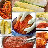 stock photo of kimchi  - making kimchi process - JPG