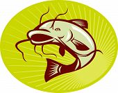 picture of catfish  - Illustration of a catfish jumping done in retro woodcut style with sunburst set inside ellipse - JPG