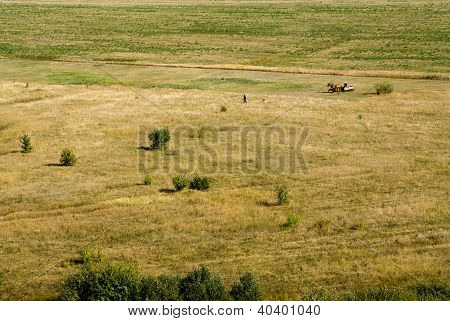 Don Steppe