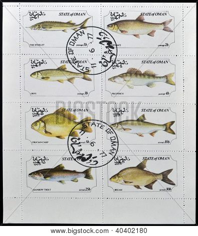 OMAN - CIRCA 1973: A collection stamps printed in Oman showing eight kinds of fish circa 1973