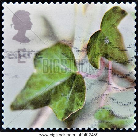 GREAT BRITIAN - CIRCA 2002: A stamp printed in United Kingdom shows the spring whit a green ivy leaf