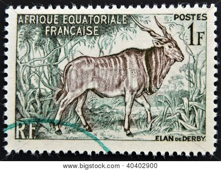 FRANCE - CIRCA 1957: A stamp printed in French Equatorial Africa shows Giant eland circa 1957