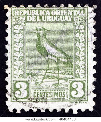 Postage stamp Uruguay 1919 Southern Lapwing, Wader Bird