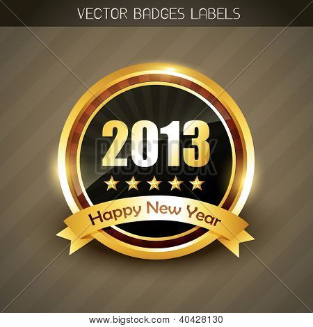 beautiful 2013 happy new year label vector