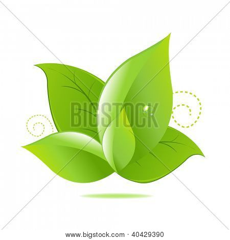 Green Leaves Icon Isolated On White Background, With Gradient Mesh, Vector Illustration