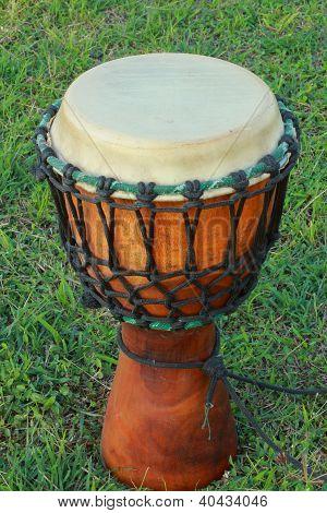 Bongo drums.
