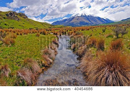Tiny Stream Through A Mountain Meadow