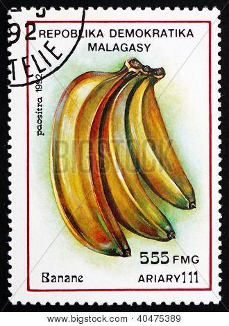 Postage stamp Malagasy 1992 Banana Fruit