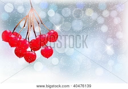 Holiday background with red berries and snowflake. Raster version of vector