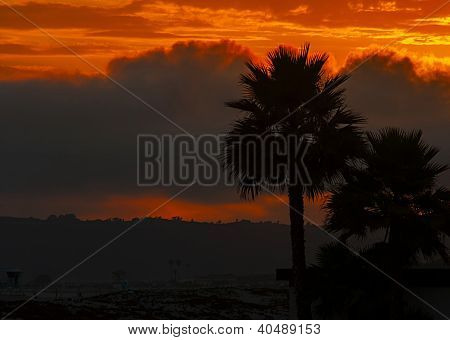 Sunset In Orange Colors With Palms Silhouette.