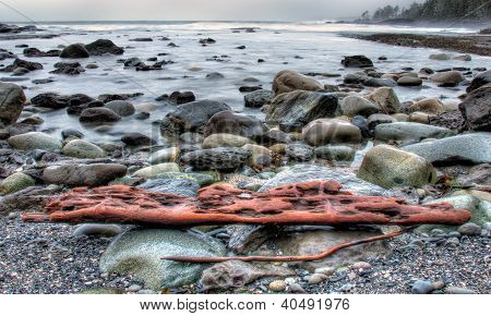 Weathered Drift Wood On Rocky Shore