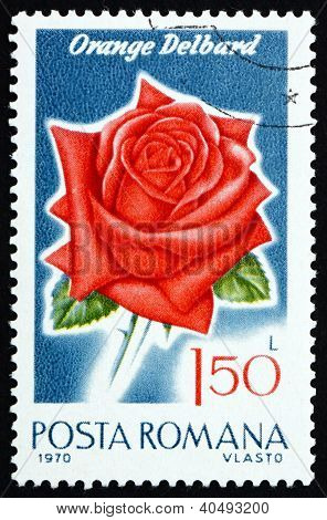 Postage stamp Romania 1970 Orange Delbard, Rose Cultivar