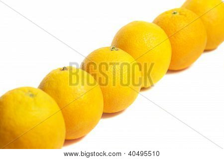 Line of oranges