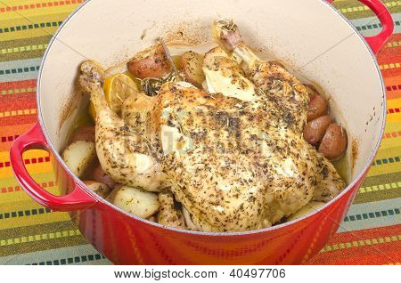 Dutch Oven Roasted Chicken with Lemon and Herbs