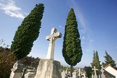 pic of crucifiction  - tombstone crosses on blue Mediterranean sky with cypruses - JPG