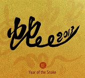 stock photo of chinese new year 2013  - Chinese Calligraphy 2013 for Year of Snake - JPG