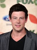 LOS ANGELES - AUG 12:  Cory Monteith arriving to FOX Fall Eco-Casino Party 2011  on August 12, 2011