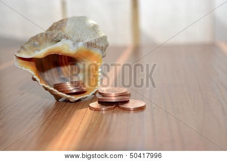 Money With Shell