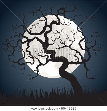 Full Moon And Gnarled Tree