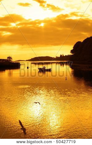 Yellow Silhouette Of Boat And Birds At Sunset