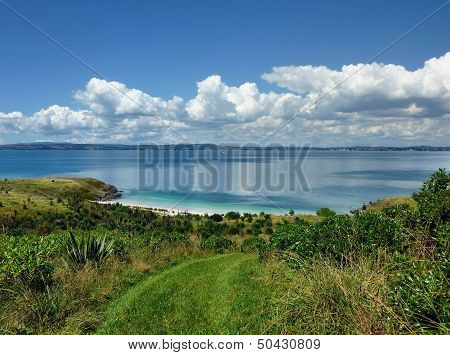 View Over Bush Vegetation Onto The Sea