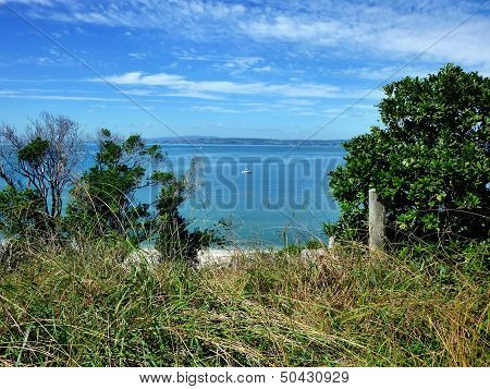View Through Trees And Bushes Onto The Sea With A Small Boat In The Background