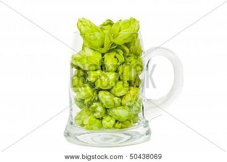 Glass Full Of Hop