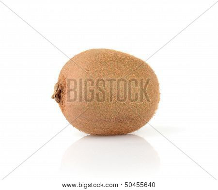Single kiwi isolated on white